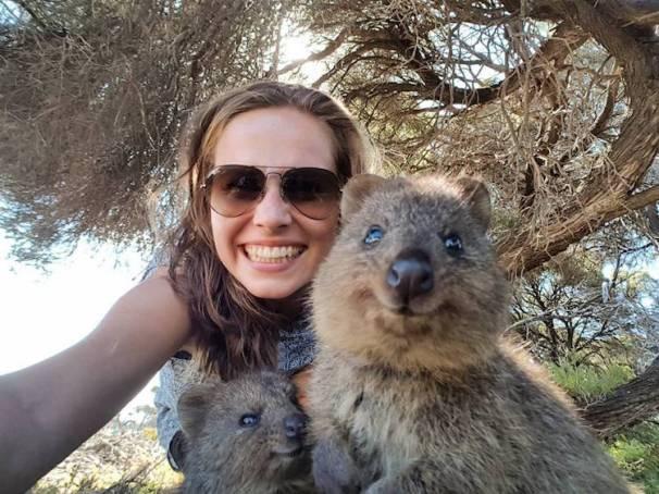 quokka-selfie-4.jpg